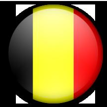 Belgische vlag logo.